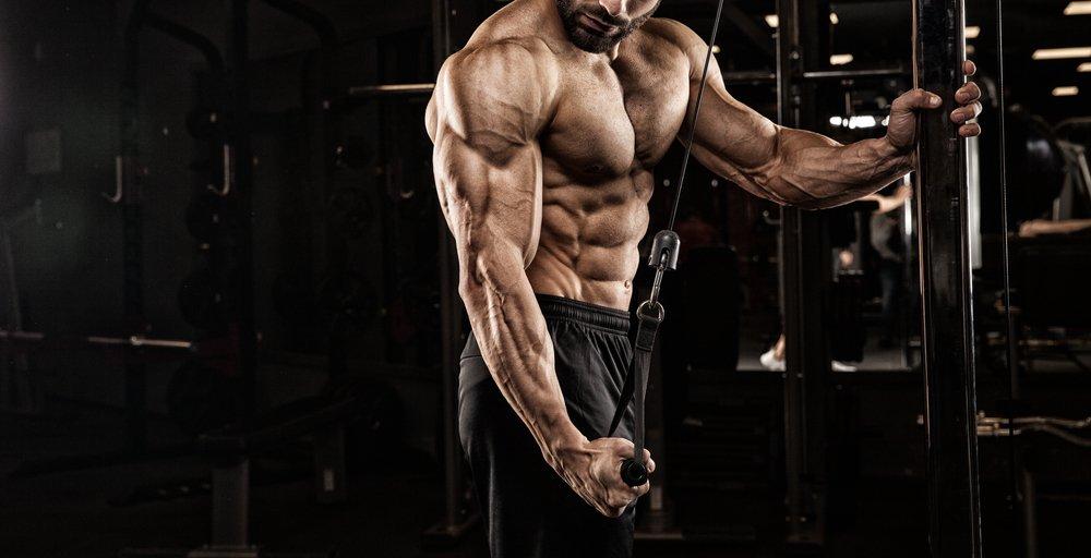 Consigli per dieta da Bodybuilding per Vegani